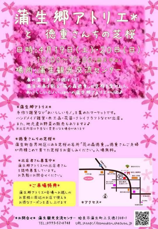 蒲生郷アトリエと徳重さんちの芝桜.jpg